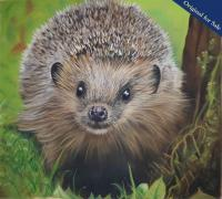 Pastel Pencil Drawing of the ever popular garden favourite. PRINTS AVAILABLE.