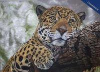 Pastel pencil drawing of the beautiful south american jaguar