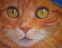 Pastel Pencil drawing of a beautiful ginger tom cat.
